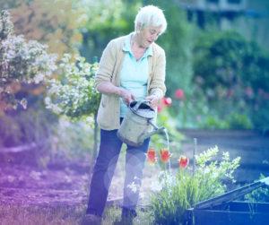 Home Care, Caregivers, Gardening, Elderly Activities
