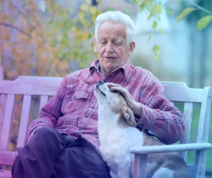 Home Care, Caregivers, Pets at Home, Pet